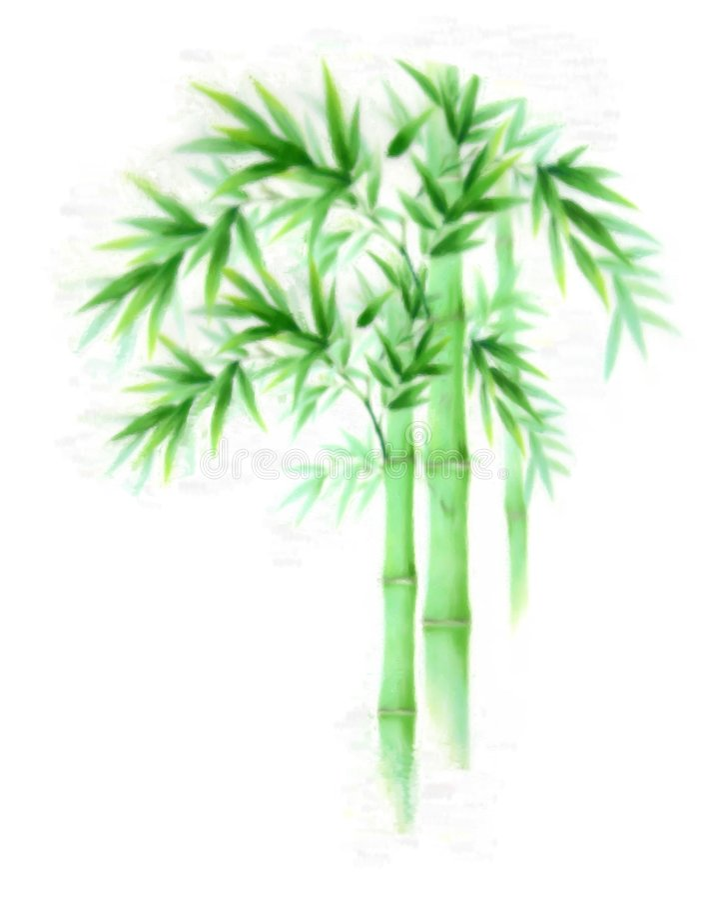 bambusowy cyfrowy obraz ilustracji