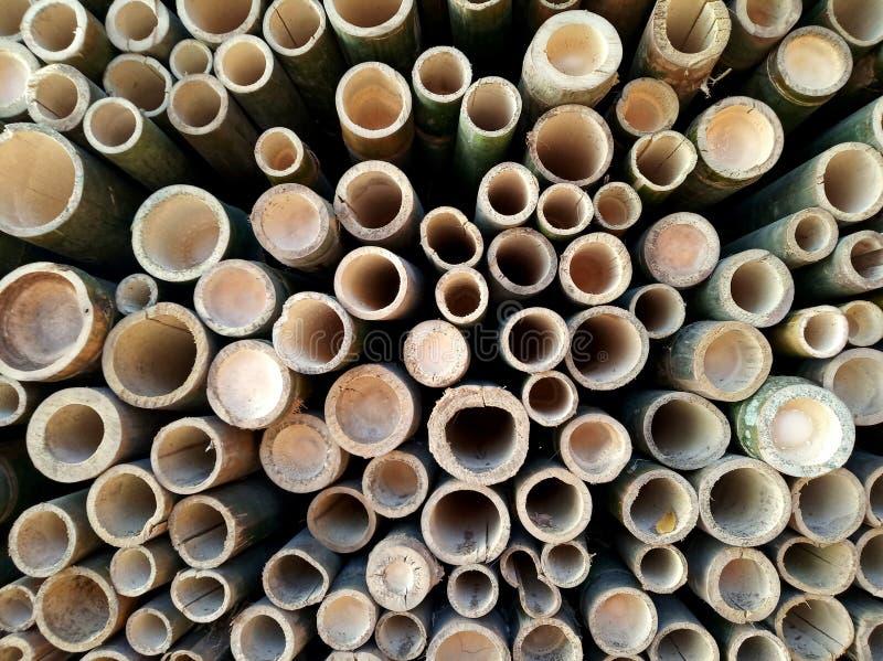 Bambusowy dziury tekstury tło fotografia stock