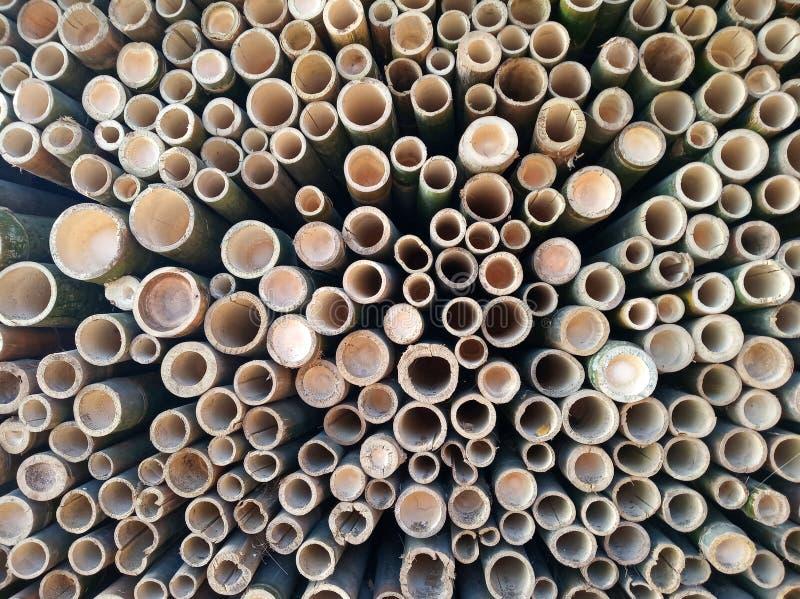 Bambusowy dziury tekstury tło fotografia royalty free