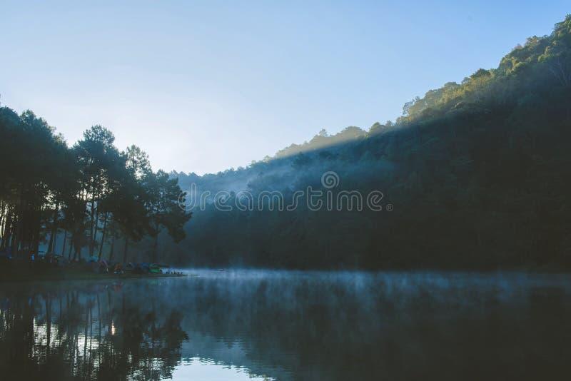 Bambusowy flisactwo na rzece z światłem słonecznym zdjęcia stock