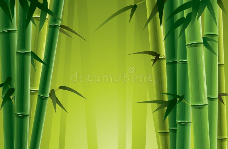 bambusowy gaj ilustracja wektor
