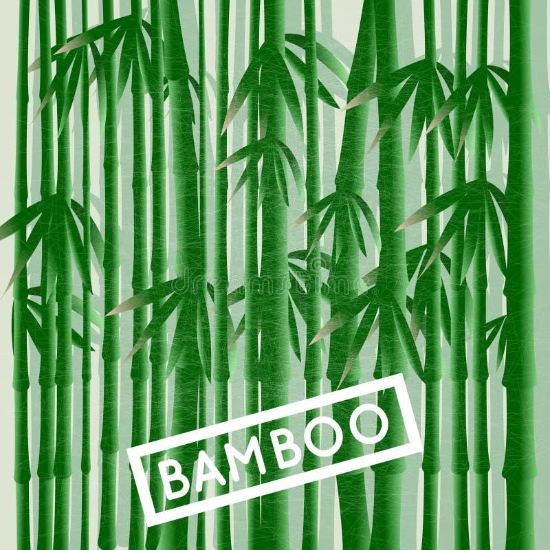 Bambusowy gaj ilustracji