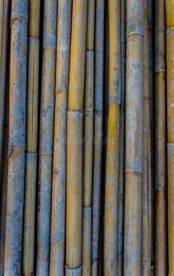 Bambusowy hoard fotografia stock