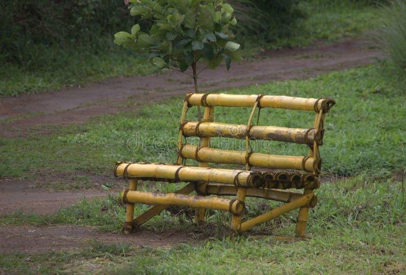 Bambusowy krzesło w ogródzie obraz royalty free