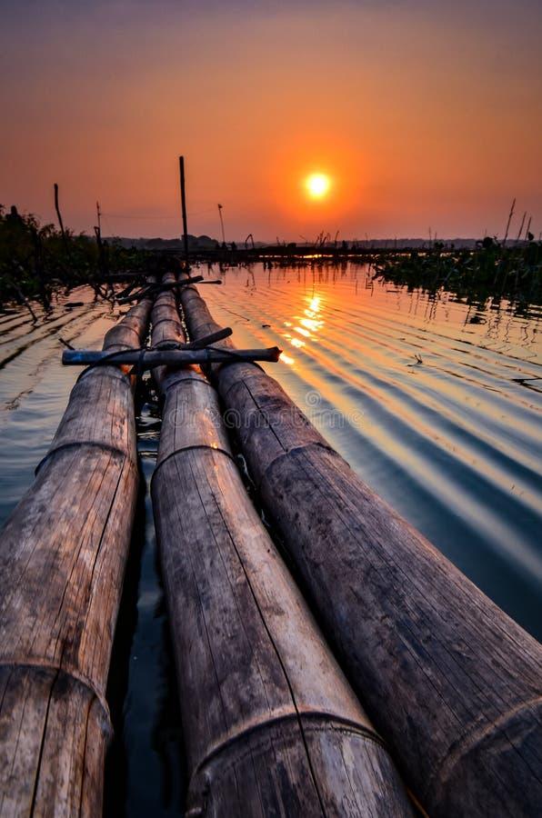 bambusowy most w kierunku bagna obrazy royalty free