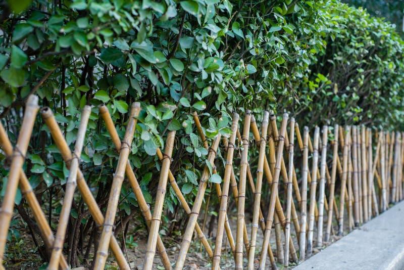 Bambusowy ogrodzenie obraz royalty free