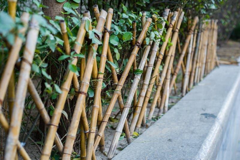 Bambusowy ogrodzenie obrazy royalty free