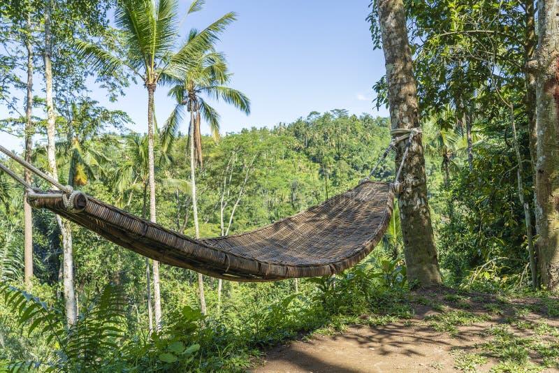 Bambusowy ?ozinowy hamak obok tropikalnej d?ungli w wyspie Bali, Indonezja fotografia royalty free