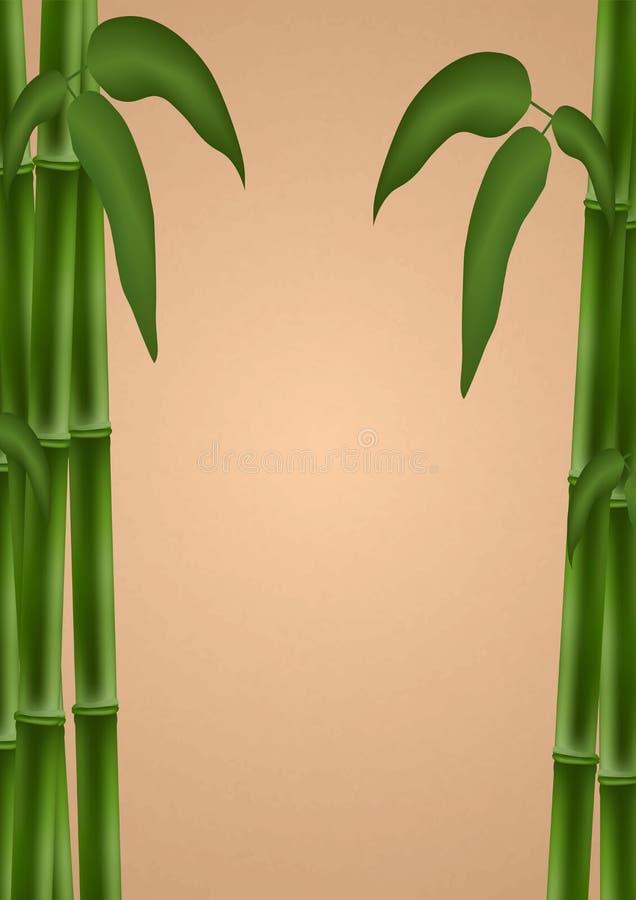 Bambusowy plakat Szablon dla projekta również zwrócić corel ilustracji wektora ilustracja wektor
