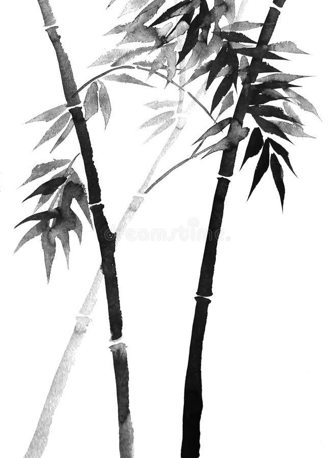 Bambusowy rysunek na ryżowym papierze z atramentem ilustracja wektor