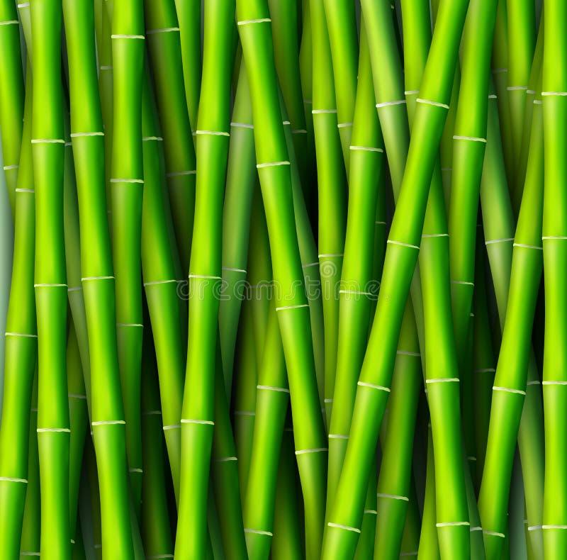 Bambusowy tła pojęcie również zwrócić corel ilustracji wektora ilustracji