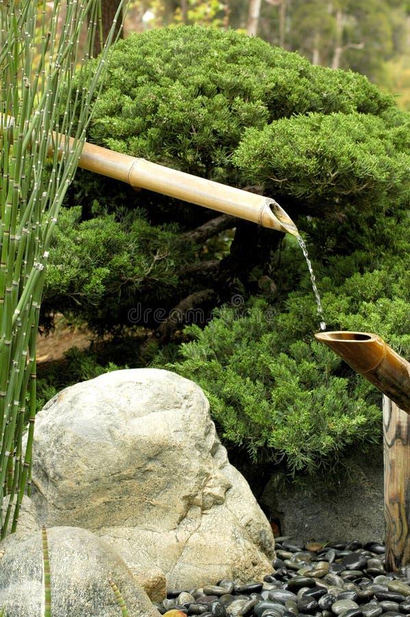Download Bambuspringbrunn fotografering för bildbyråer. Bild av vass - 983929