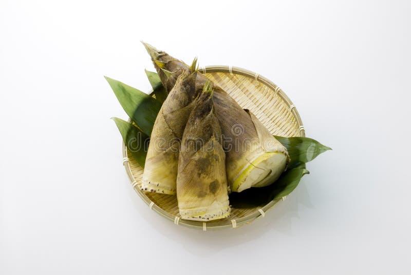 Bambusschosse lizenzfreie stockfotos