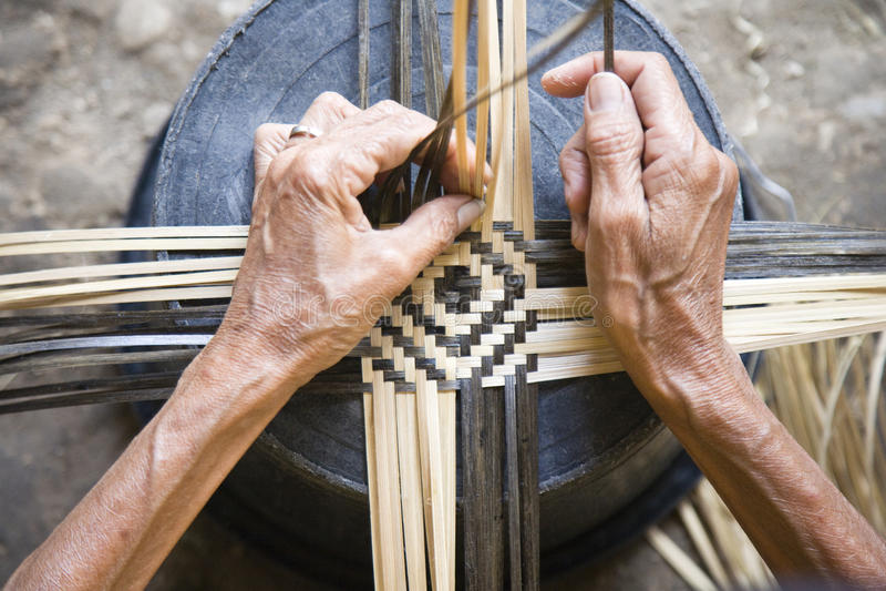 Bambusspinnen lizenzfreies stockfoto