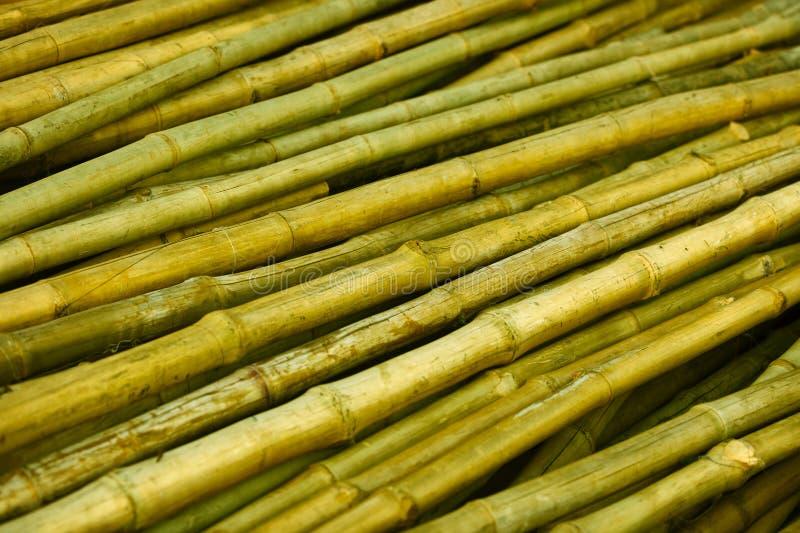 Bambustammar som är förberedda för byggande arkivfoton