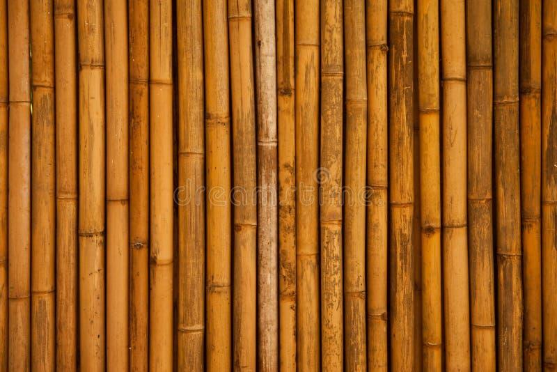 Bambuswand lizenzfreie stockbilder