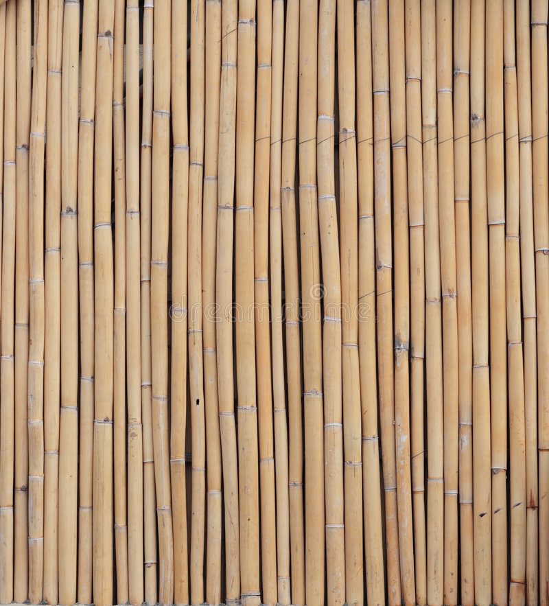 Bambuswand stockfotos