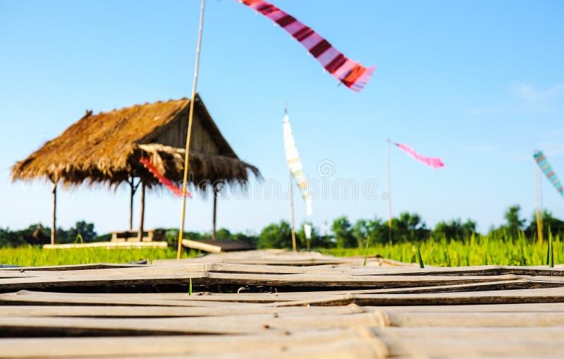 Bambuswegweise gehen zur Hütte auf den Reisgebieten stockfoto