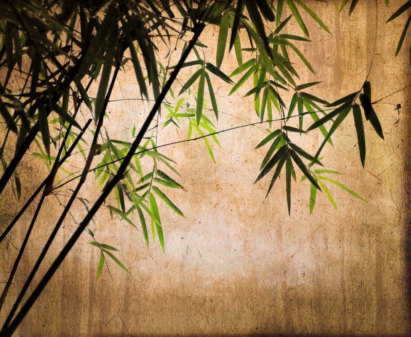 Bambusy na rocznika sepiowym tle obraz royalty free