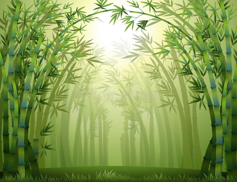 Bambuträd inom skogen royaltyfri illustrationer