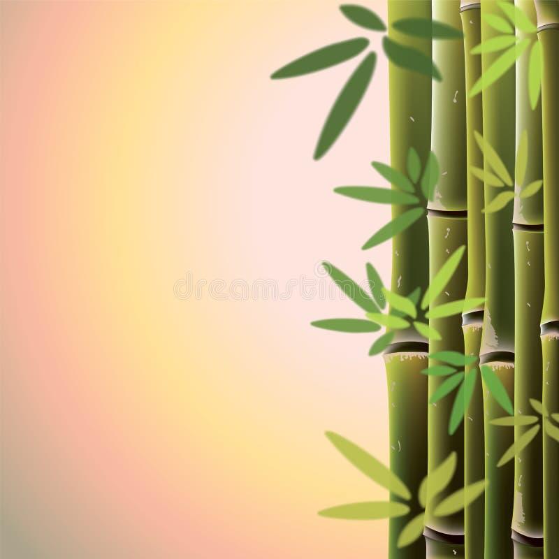 Bambuträd och sidor på solnedgångtid stock illustrationer