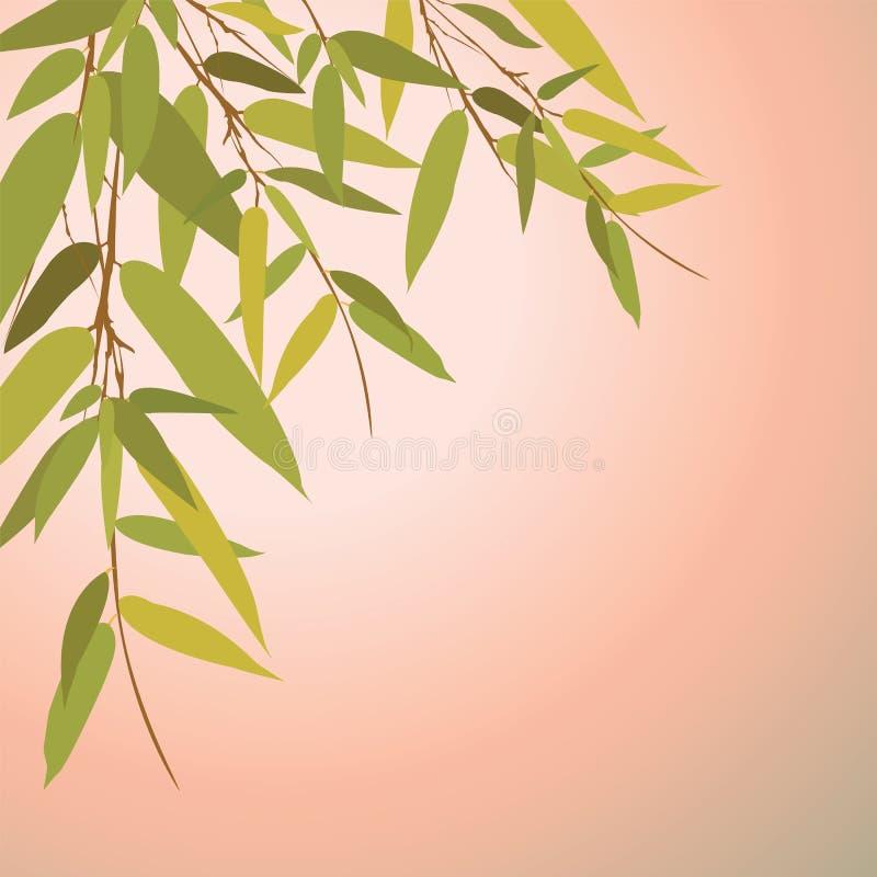 Bambuträd och sidor på solnedgångtid vektor illustrationer