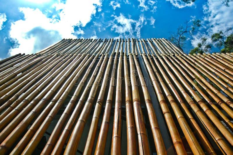 bambuvägg royaltyfria bilder