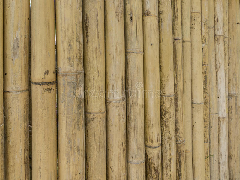 Bammboo wall in Krabi. Bamboo wall hand made in Thailand royalty free stock image