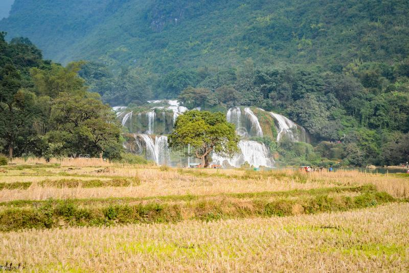 Ban Gioc Waterfall o Detian Falls, Vietnam' cascata più nota di s situata in Cao Bang fotografia stock libera da diritti