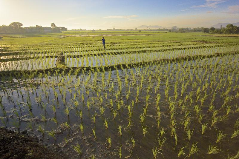 Ban Huai Nam Dip royalty free stock photo