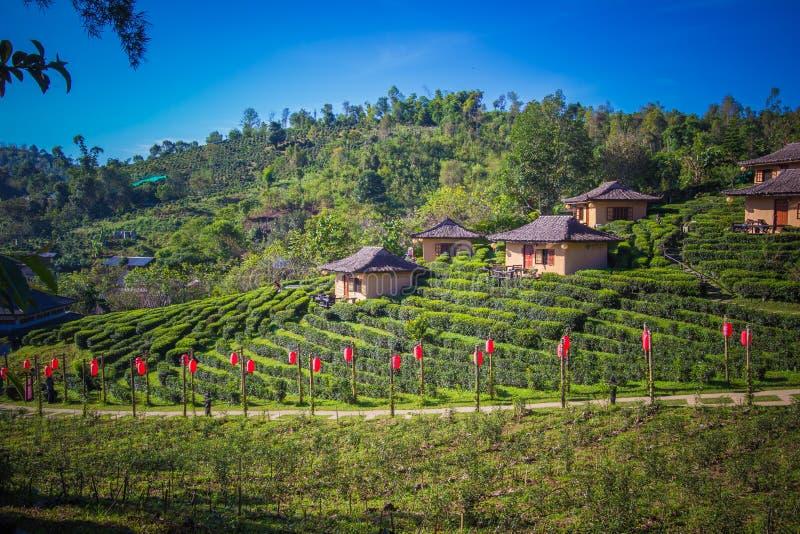Mae Hong Son province,Northern Thailand on November 19,2017:Earthen buildings and U-Long tea plantations at Ban Rak Thai Village,n royalty free stock photos