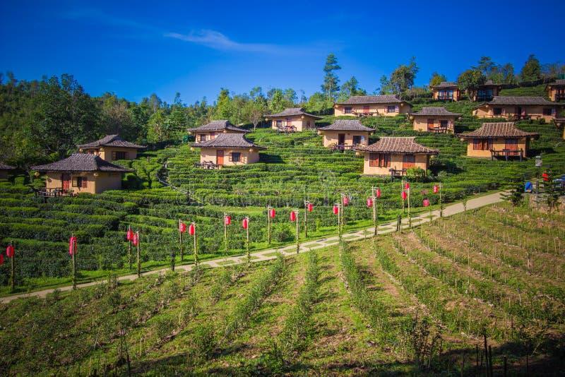 Mae Hong Son province,Northern Thailand on November 19,2017:Earthen buildings and U-Long tea plantations at Ban Rak Thai Village,n royalty free stock photo