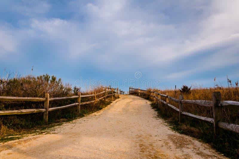 Bana över sanddyn till stranden, Cape May som är nytt - ärmlös tröja royaltyfria bilder