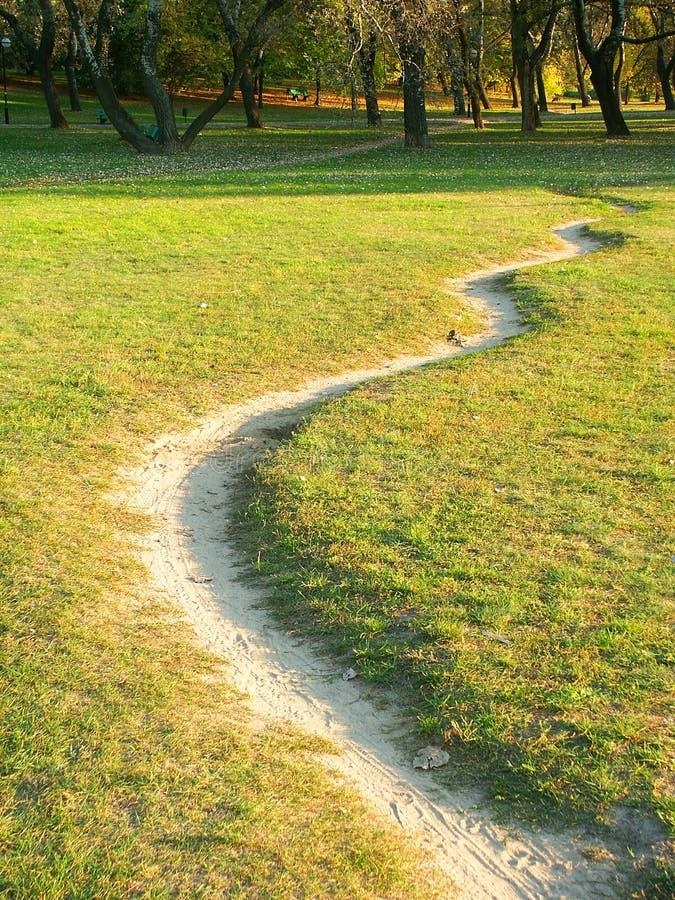Download Bana fotografering för bildbyråer. Bild av leaf, gräs, äng - 280051