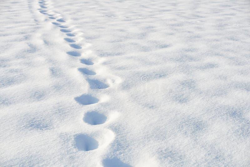Bana i snö efter snöfall arkivfoto
