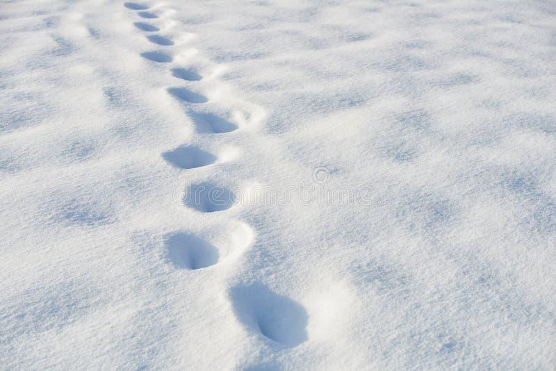 Bana i snö efter snöfall royaltyfria bilder