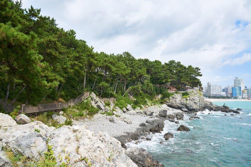 Bana längs kusten av den Dongbaek ön royaltyfri foto