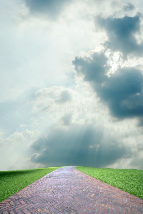 Bana mellan det frodiga gröna fältet och himmel i bakgrund royaltyfri bild