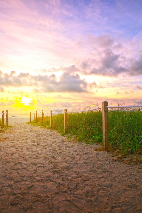 Bana på sanden som går till havet i Miami Beach royaltyfri foto