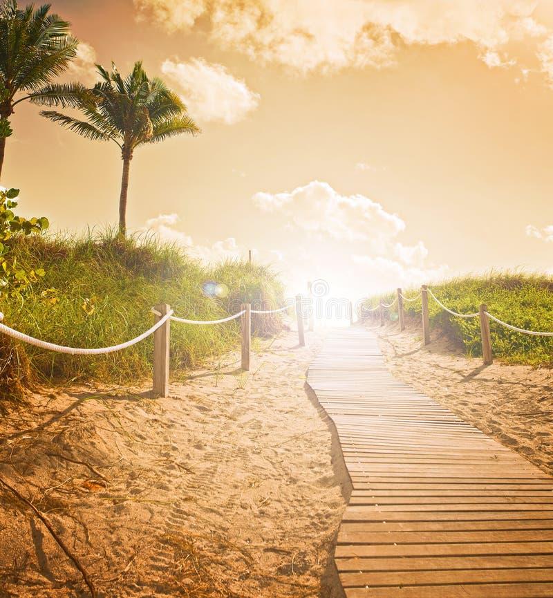 Bana på sanden som går till havet i Miami Beach arkivbilder