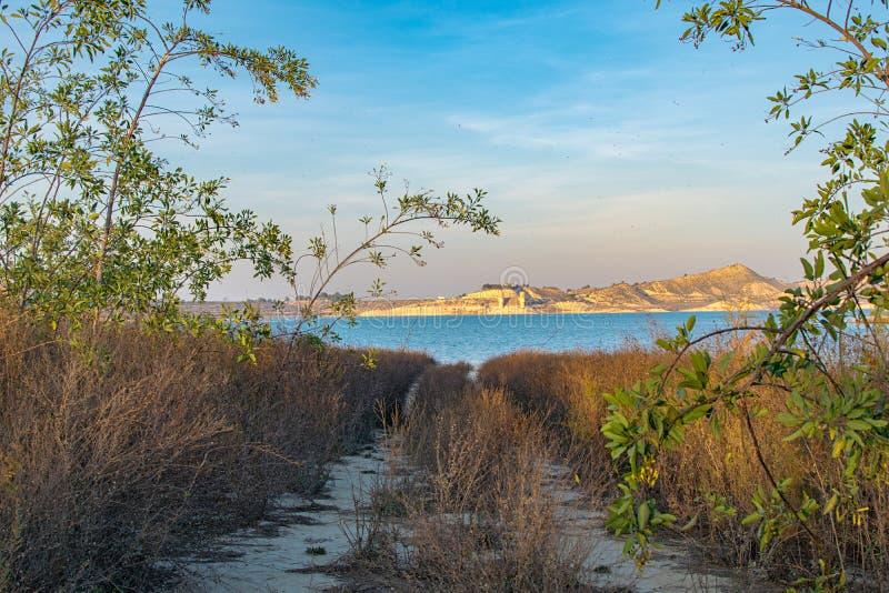 Bana som omges av vegetation som leder till sjön fotografering för bildbyråer