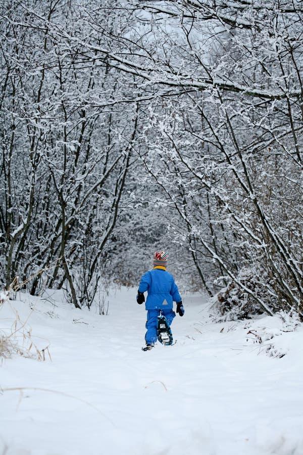 Bana Som Snowshoeing Arkivbild