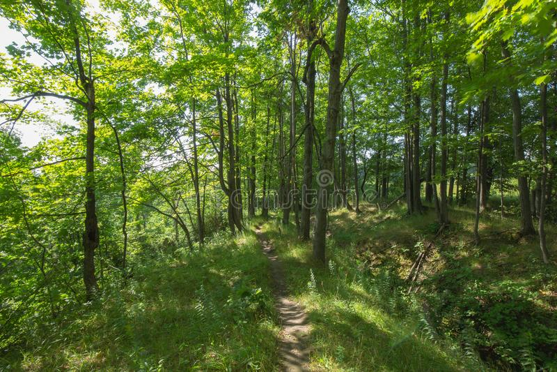 Bana in till Bruce Trails Split Rock Narrows royaltyfri foto