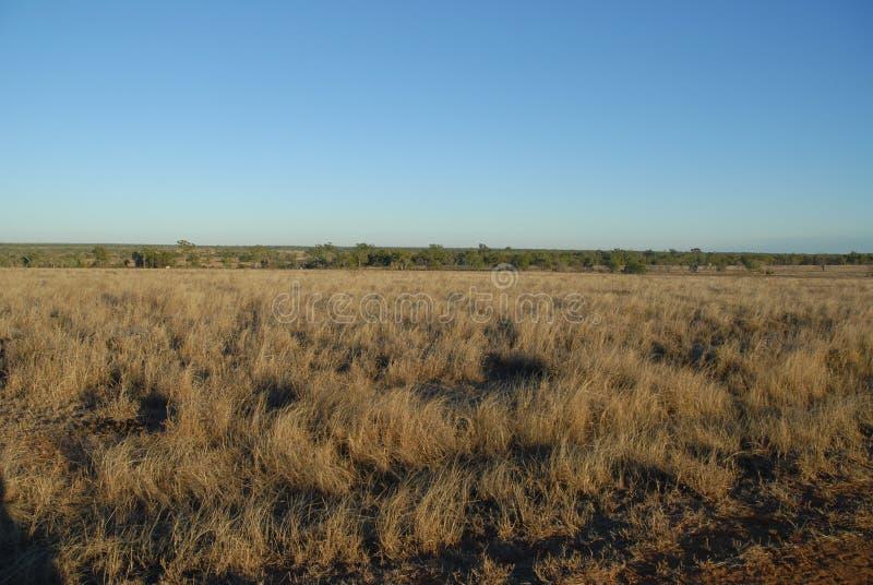 Bana till och med det ointressanna torra landskapet, vildmark Queensland, Australien arkivbilder