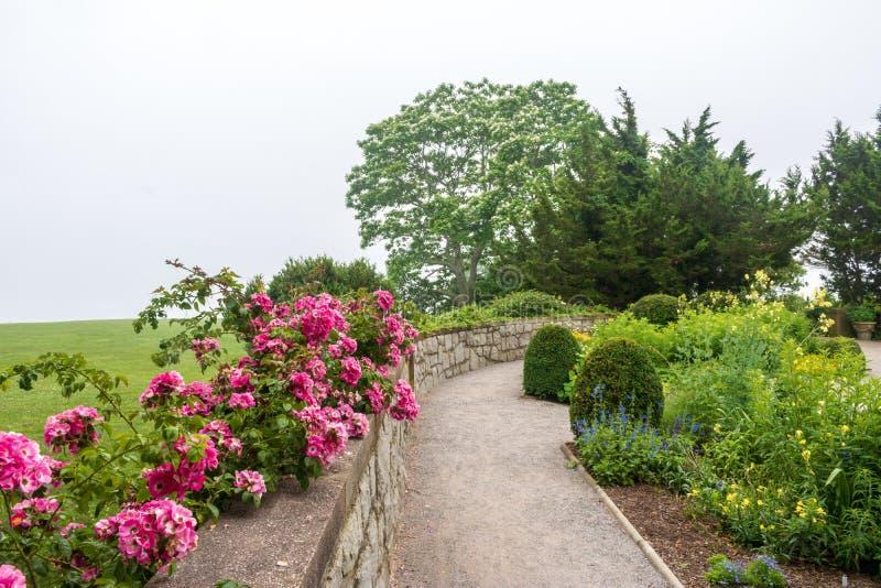 Bana till och med en formell trädgård med klättringrosor på en dimmig dag arkivbild