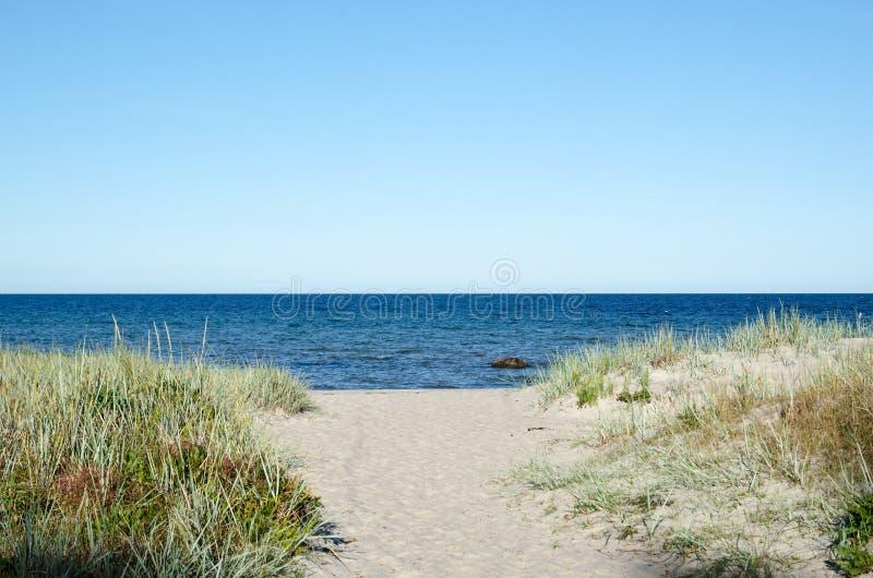 Bana till stranden av Östersjön på den svenska ön Oland royaltyfri fotografi