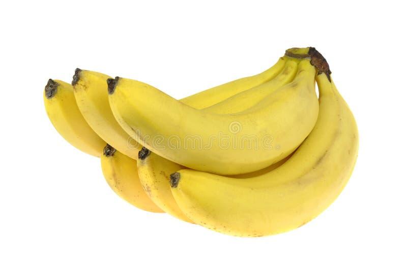 Banaan Bos van rijpe die bananen, op witte achtergrond wordt geïsoleerd royalty-vrije stock foto's