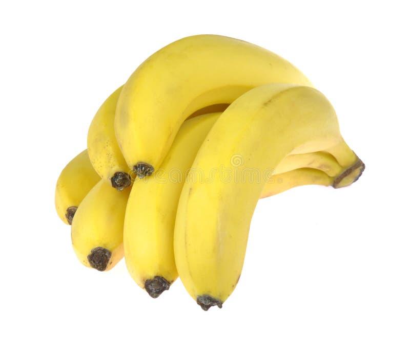 Banaan Bos van rijpe die bananen, op witte achtergrond wordt geïsoleerd stock afbeelding