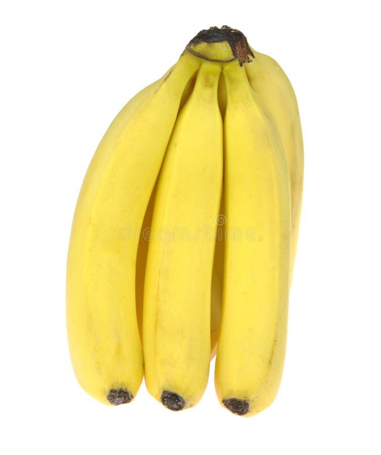 Banaan Bos van rijpe die bananen, op witte achtergrond wordt geïsoleerd royalty-vrije stock foto