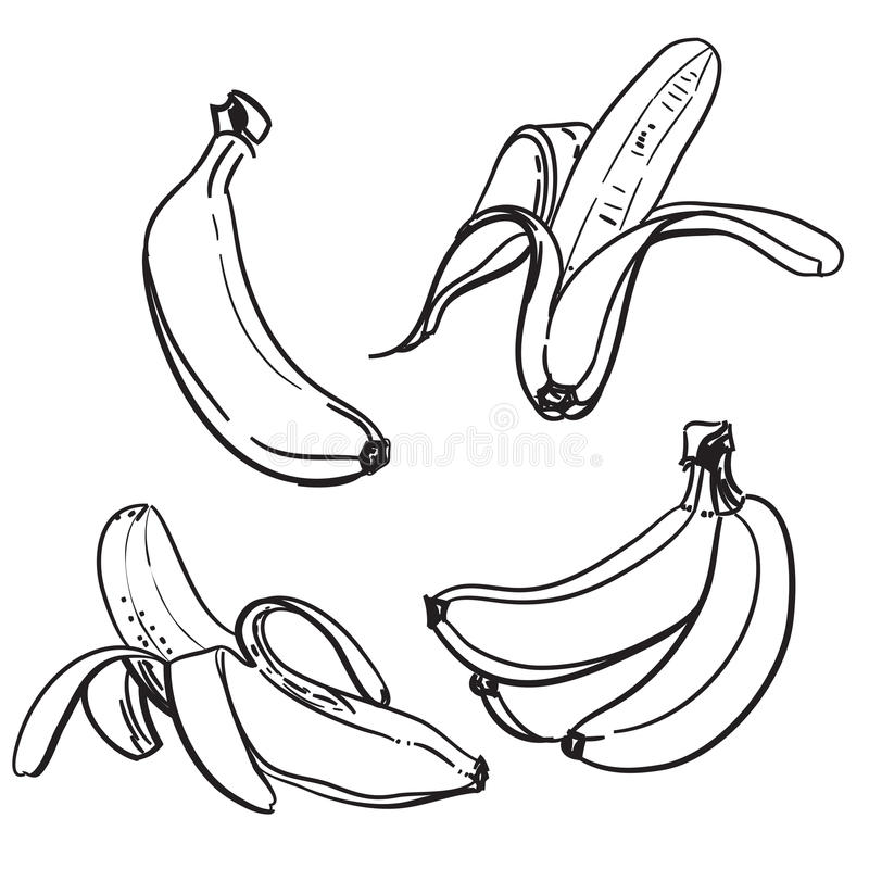 Banaan Lijntekening van bananen Op een witte achtergrond Één kleur Vector illustratie stock afbeeldingen